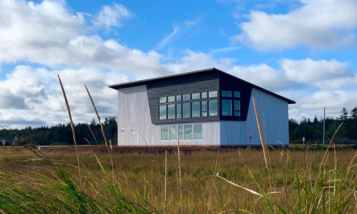 New Fish Factory